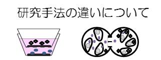 細胞間相互作用研究手法の違いについてのイメージ